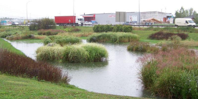 Bassin d eau rouen 32 - Bassin naturel jardin rouen ...